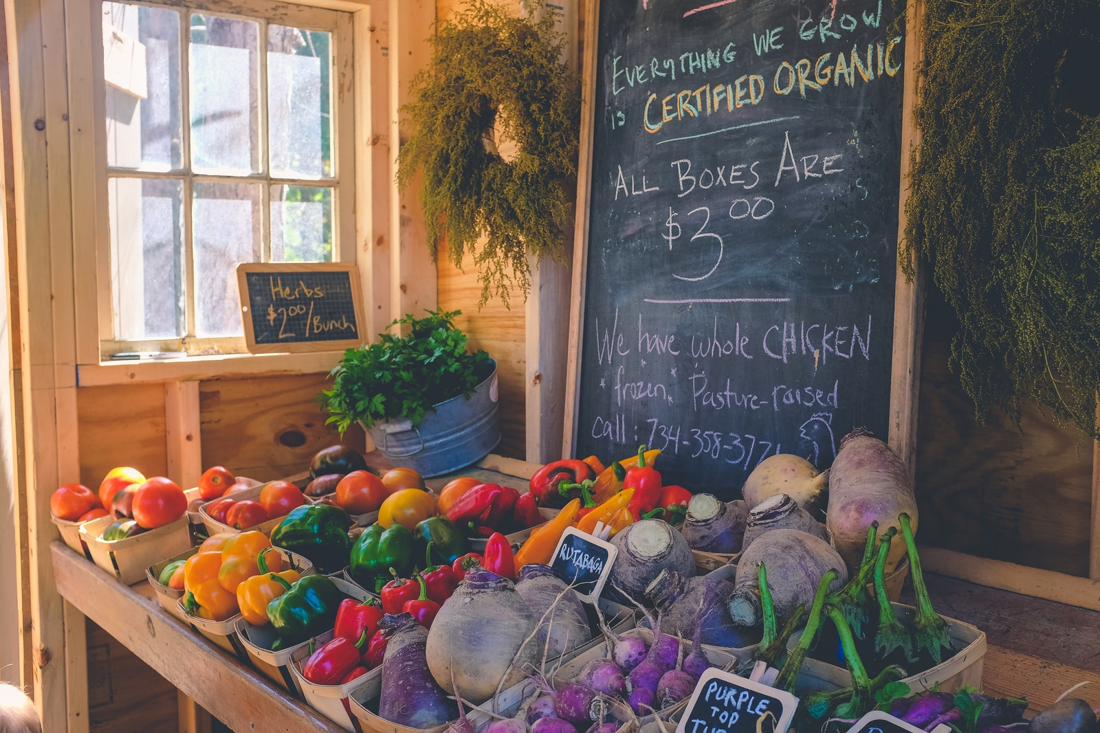 health food store with a variety of vegetables on display